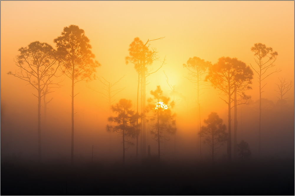 Florida Sunrise 01